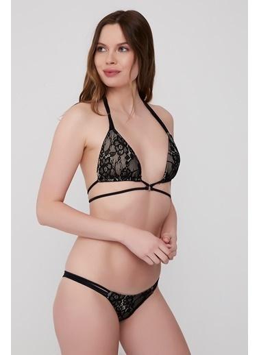 Plumeria Swimwear Bikini Siyah